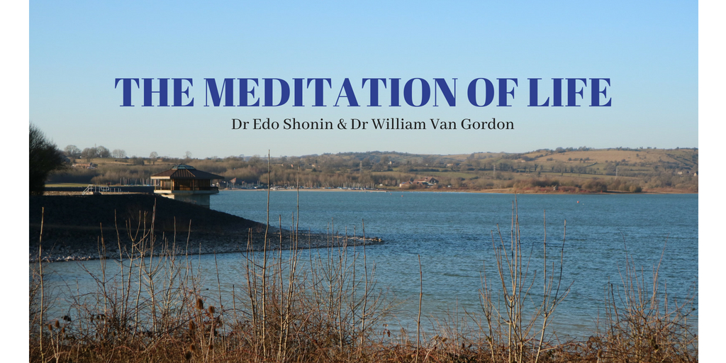 THE MEDITATION OF LIFE