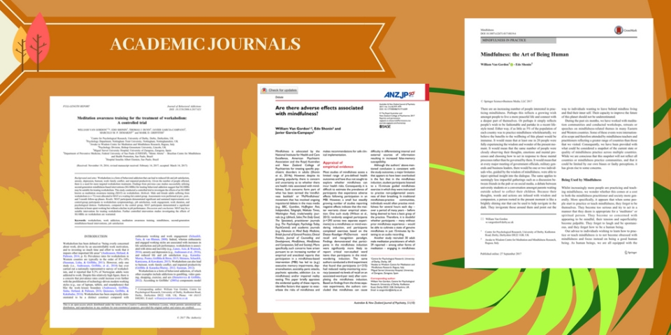 Academic Journal