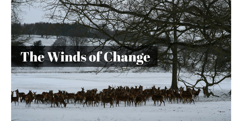 The winds of change (1)